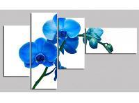 Tranh bộ nghệ thuật hoa Lan xanh DH84...